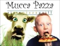 mucca_pazza