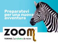 zoom_estate_news_6_17