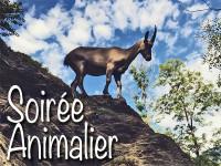 animalier_news_9_17